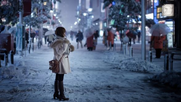Обои Девушка на зимней улице
