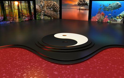 Обои Сцена оформленная со знаком Инь-Янь и экранами вокруг, с картинками животных и природы, для просмотра в 3 D изображении