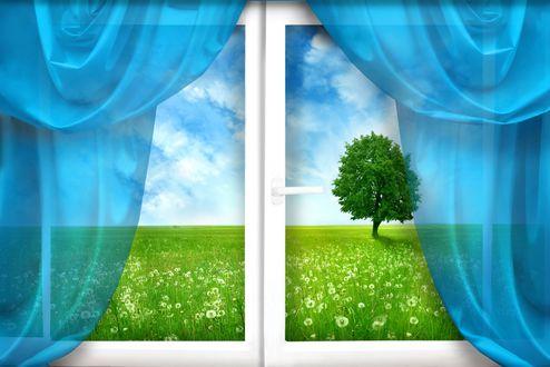 Обои Окно с голубыми шторами с видом в окне природы