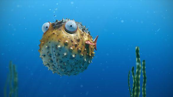 Обои Рыба-шар покрытая шипами, плывет под водой, выпуская пузырьки воздуха изо рта