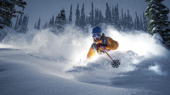 Обои Лыжник в экипировке спускается на лыжах с горы в эимнем лесу, подняв шлейф снега