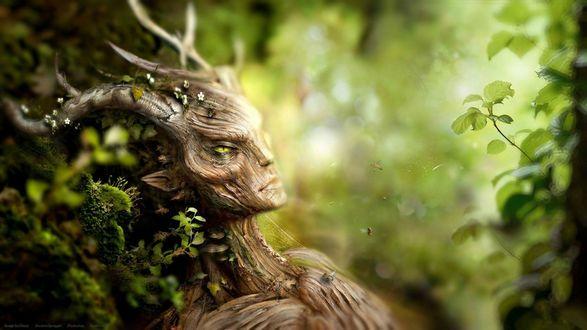 Обои Персонаж компьютерной игры The elder scrolls. Деревянное существо с рогами