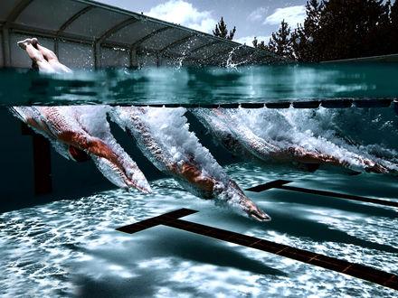 Обои Старт спортсменов пловцов в бассейне с водой
