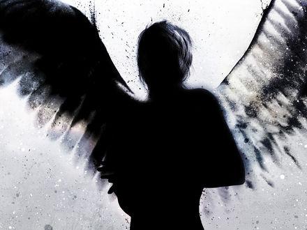 Обои Черный силуэт ангела на светлом фоне