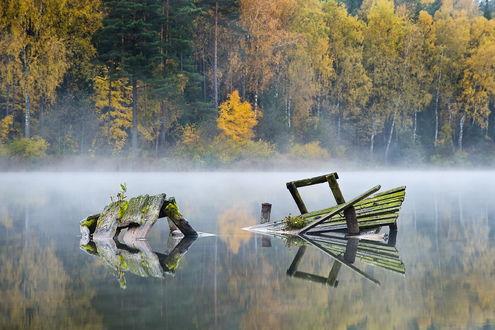 Обои Остатки ветхого, деревянного мостика, покрытого зелеными водорослями, находящегося на реке с берегами, покрытыми густым лесом с деревьями, покрытыми осенними листьями, легкой дымки тумана, исходящего от поверхности воды, автор Rimantas Bikulcius