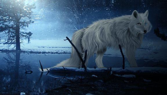 Обои Волк на зимней реке в лесу, by itsdura
