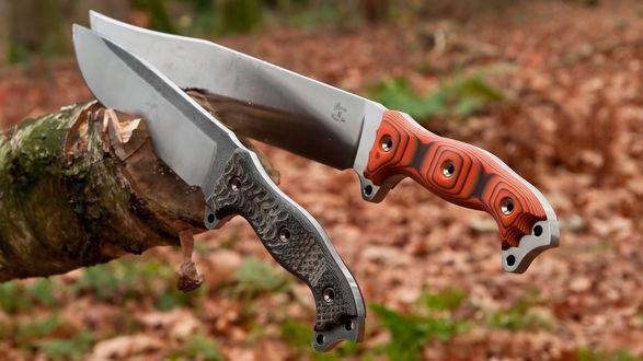 Обои Два метательных ножа торчат в стволе дерева