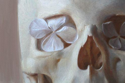 Обои Цветы внутри черепа