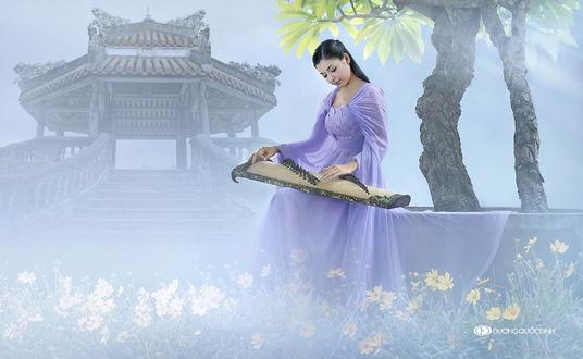 Обои Темноволосая девушка азиатской внешности, сидящая на каменном ограждении деревьев, играющая на японском инструменте кото в окружении желтых цветов и туманной дымки, автор DUONG QUOC DINH