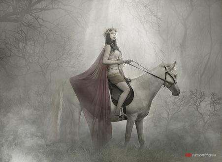 Обои Девушка азиатской внешности с венком из цветов на голове, сидящая на белом коне на опушке леса с туманом между деревьями, автор DUONG QUOC DINH