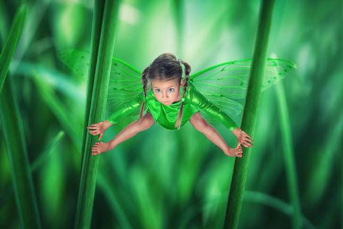 Обои Маленькая фея в зеленом платье держится за травинки ручками и ножками на размытом фоне
