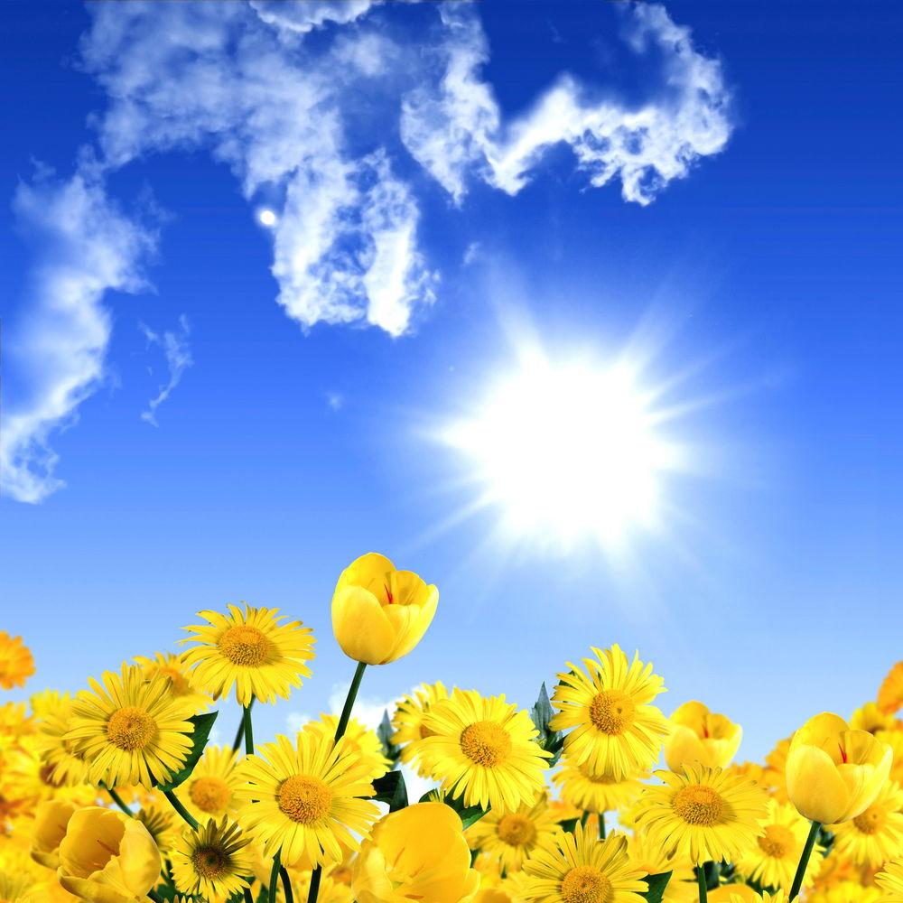 Солнечная погода открытки
