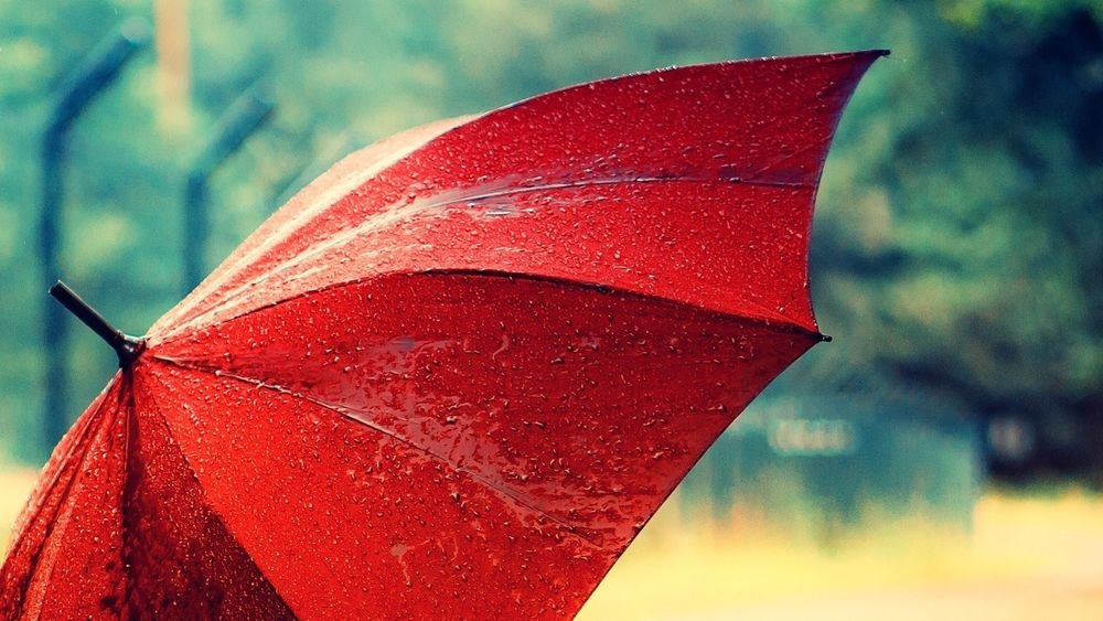 Обои Красный зонт после дождя, обои для рабочего стола Красный HC110