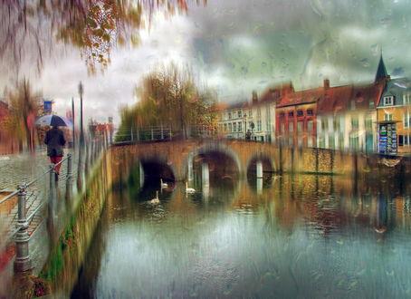 Обои Человек, идущий с зонтиком под дождем по мощеной набережной городской реки в которой плавают белые лебеди на фоне пасмурного, дождевого неба, автор Александр Атоян