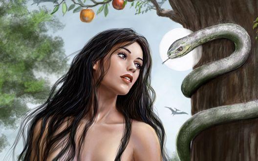 Обои Девушка с распущенными волосами смотрит на змею которая обвилась во круг яблони