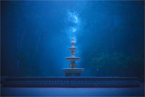 Обои Фонтан без воды на синем фоне громадного леса