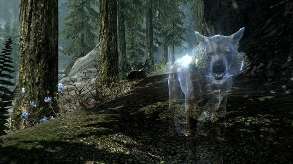 Обои Призрачный волк из игры Skyrim