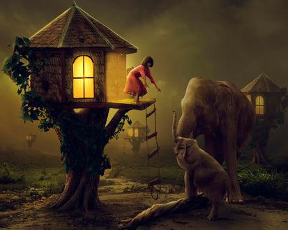Обои Девочка, стоящая на пороге дома с освещенными окнами, расположенного на ветках дерева с веревочной лестницей, спускающейся к земле, приглашает к себе в гости слониху и слоненка, стоящих внизу