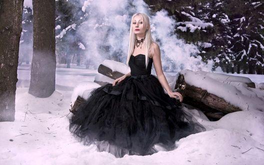Обои Светловолосая девушка в легком, воздушном, черном платье, стоящая в снегу возле лежащих, спиленных стволов деревьев