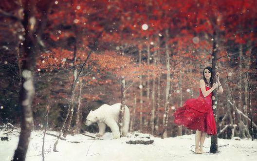 Обои Черноволосая, босоногая, замерзающая девушка в легком, красном платье, стоит прижавшись к дереву, невдалеке, через лес, по заснеженной опушке пробирается белый медведь