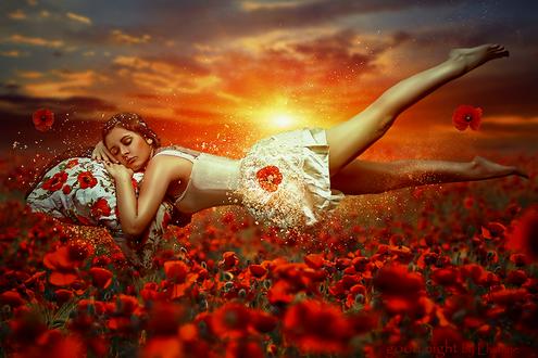 Обои Рыжеволосая девушка, спящая на подушке с цветами, парит во сне над маковым полем на фоне солнечного заката, автор Lhianne