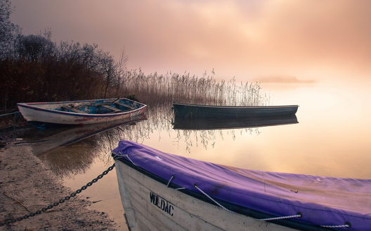 лодка с веслами у берега