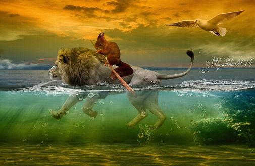 Обои Рыжая белка с веслом, сидящая на спине льва, плывущего по морю на фоне пасмурного неба и парящей в воздухе морской чайкой, автор Lady Judina
