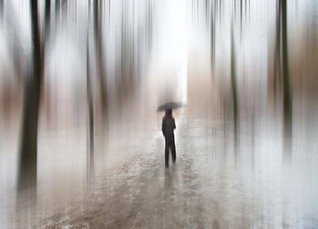 Обои Стройная девушка, держащая в руке зонтик, идущая по лесной тропинке под дождем, автор Людмила