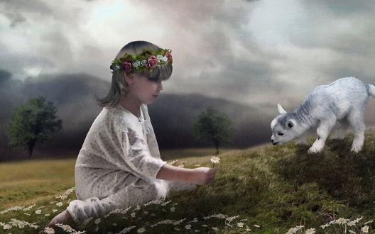 Обои Девочка с венком из цветов на голове, сидящая среди ромашек, протягивает цветок любопытному козленку