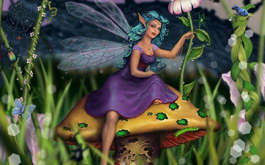 Обои Лесная фея с крылышками стрекозы за спиной, сидящая на огромной шляпке гриба в окружении цветов и другой растительности, с сидящей на листьях лягушкой, бабочкой и жуком в крупных каплях утренней росы