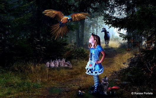 Обои Девочка в синем платье с любопытством смотрит на парящего над ней попугая ара, рядом у ног девочки стоит серый котенок, под деревом сидит стайка кроликов, на лесной дорожке стоит конь, автор Raissa Portela