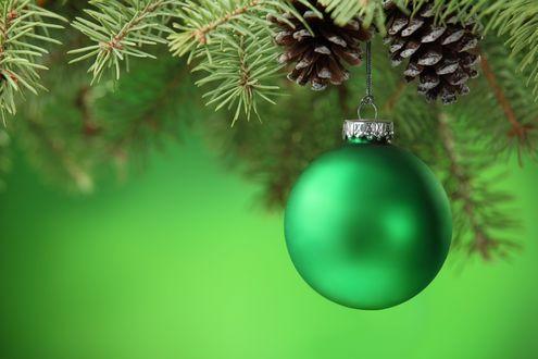 Обои На ветке елки висит новогодний зеленый шар