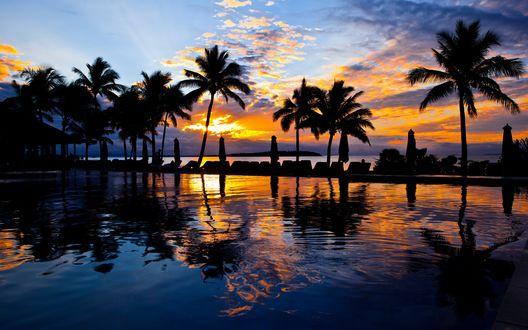 Обои Свернутые зонтики для отдыхающих на океанском побережье в окружении пальм на фоне вечернего небосклона с перистыми облаками