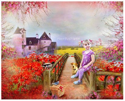 Обои Маленькая девочка с косичками и розовыми бантиками сидит на перилах мостика. по обе стороны которого цветут цветы, вдали виднеется дом, рядом с девочкой сидят пес, утка, птичка, стоит корзинка с красными ягодами, на которой сидит попугайчик, в небе летают птицы, roserikagraphic