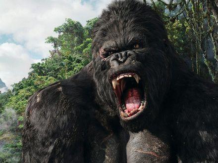 Обои Одноименная гигантская обезьяна горилла из кинофильма Кинг - Конг открыла огромную зубастую пасть