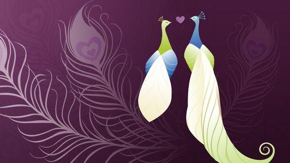 Обои Пава и павлин сидят на фоне абстракции из павлиньих перьев на сиреневом фоне, между ними сердечко
