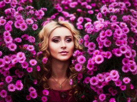 Обои Светловолосая девушка стоящая в кустах с розовыми цветами, автор Светлана Беляева