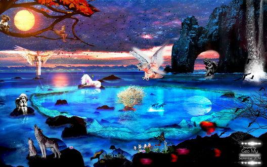 Обои Фантастическое побережье моря с каменными скалами необычной формы, воющих на ярко светящуюся луну волков, белого единорога, парящей над водой совы, различных скульптур детей с ангельскими крылышками, порхающих над цветами бабочек, летающих возле водопада птиц, автор Geo-My
