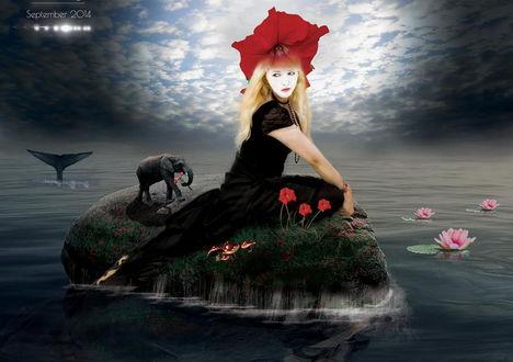 Обои Светловолосая девушка с алым маком на голове, сидящая на небольшом каменном островке возле цветущих маков, с идущим сзади нее слоненком с цветочным букетом в хоботе, остров окружен водой с цветущими лилиями, парящей над водой птицей, автор Geo-My