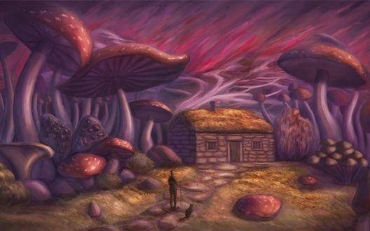 Обои Мужчина с палкой в руке, сидящим рядом котом, находящиеся на каменной дорожке, ведущей к небольшому домику в окружении фантастических, огромных грибов