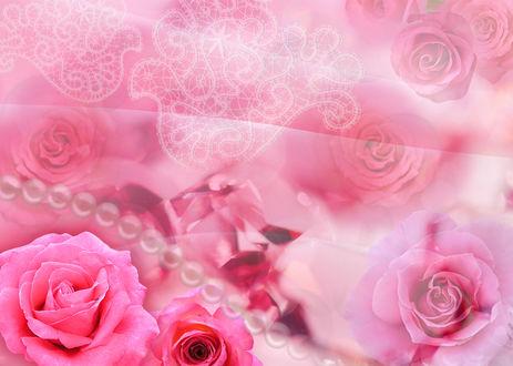Обои Цветочный фон из роз