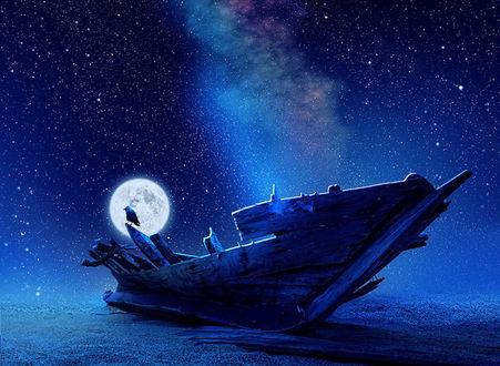Обои Ветхий рыбацкий баркас, стоящий на берегу моря, сидящей на его борту черной вороной на фоне ночного, звездного неба и Млечного пути, автор Garas Ionut/