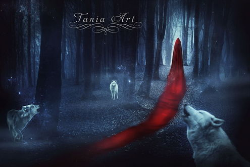 Обои Девушка в длинном, красном одеянии с капюшоном на голове, идущая ночью по лесной дорожке с воющими, белыми волками, автор Tania Art