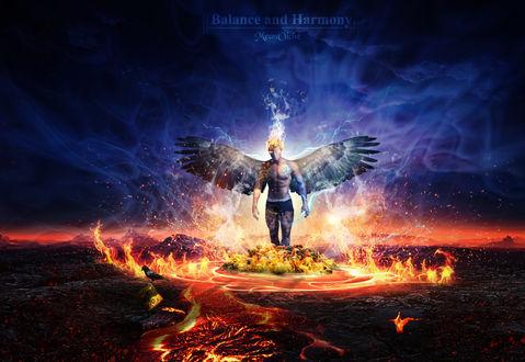 Обои Мужчина с крыльями в огне