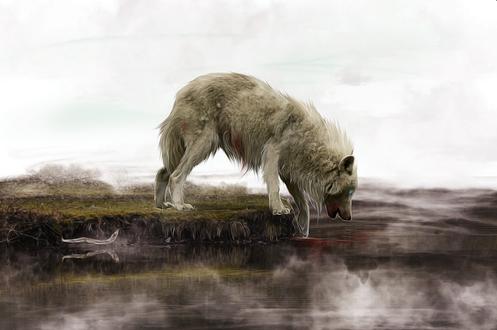 Обои Окровавленный волк, стоящий на берегу реки на фоне серого, пасмурного неба, автор chertan-Koraki