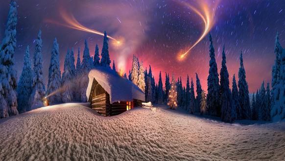 Обои Домик в зимнем лесу