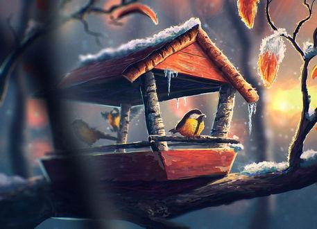 Обои Птички сидят в скворечнике, художник Артем Артяков (sylar113)