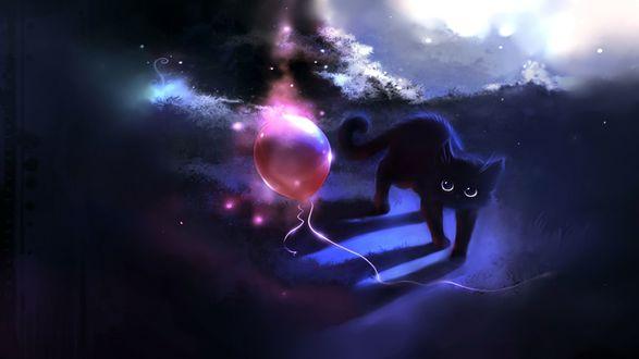 Обои Черный кот удивленно смотрит на красный, надувной, воздушный шарик