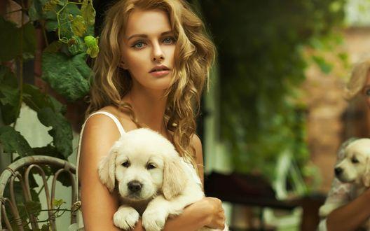 Обои Красивая девушка держит на руках белого щенка
