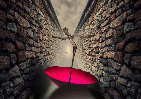 Обои Красный зонтик с ручкой из сучка дерева в форме старика, лежащий в воде между высокими, каменными стенами, автор Garas Ionut
